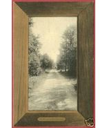 TRAVERSE CITY MI Birchwood Road 1909 Postcard BJs - $10.00