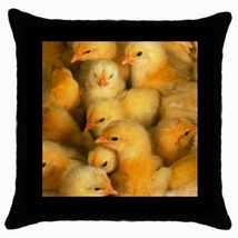 Throw Pillow Case Decorative Cushion Cover Baby Chickens Gift model 3033... - $16.99