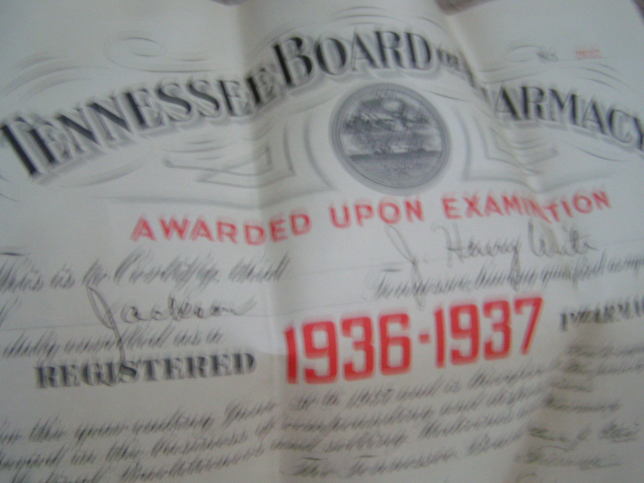 OLD 1936 37 Tennessee Board of Pharmacy Certificate Diploma Seal Ephemera bz