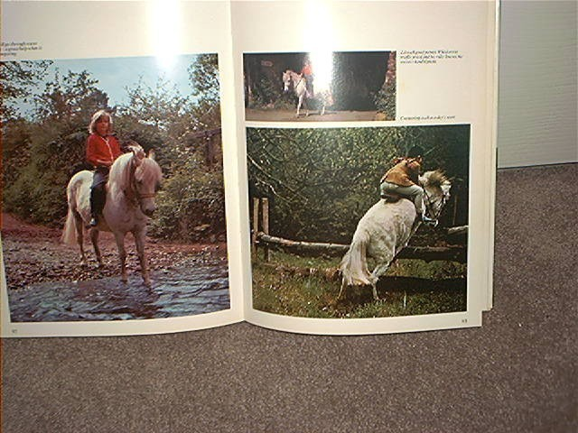 THE WORLD OF PONIES Book by Judith Campbell 1970 HC DJ