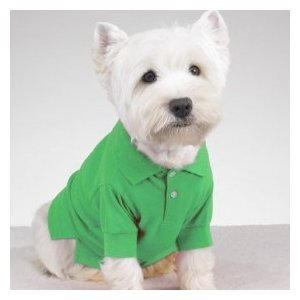 Preppy Puppy Polo Shirt Green SMALL