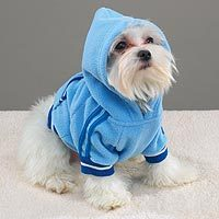 Sporty Fleece Pullover BLUE SMALL