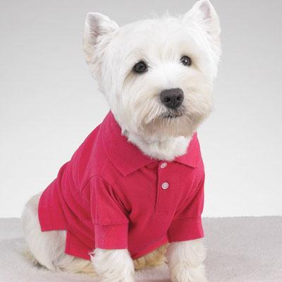 Primary image for DOG Preppy Puppy Polo Shirt Pink MEDIUM