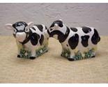 Cowsp thumb155 crop