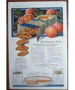 1919 Blue Ribbon Peaches Recipes & Color Vintage Large Page Ad - $6.95