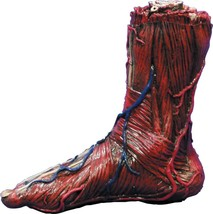Skinned Bloody Latex Right Foot Prop Gross Gory Creepy Veins Halloween 8... - $34.99