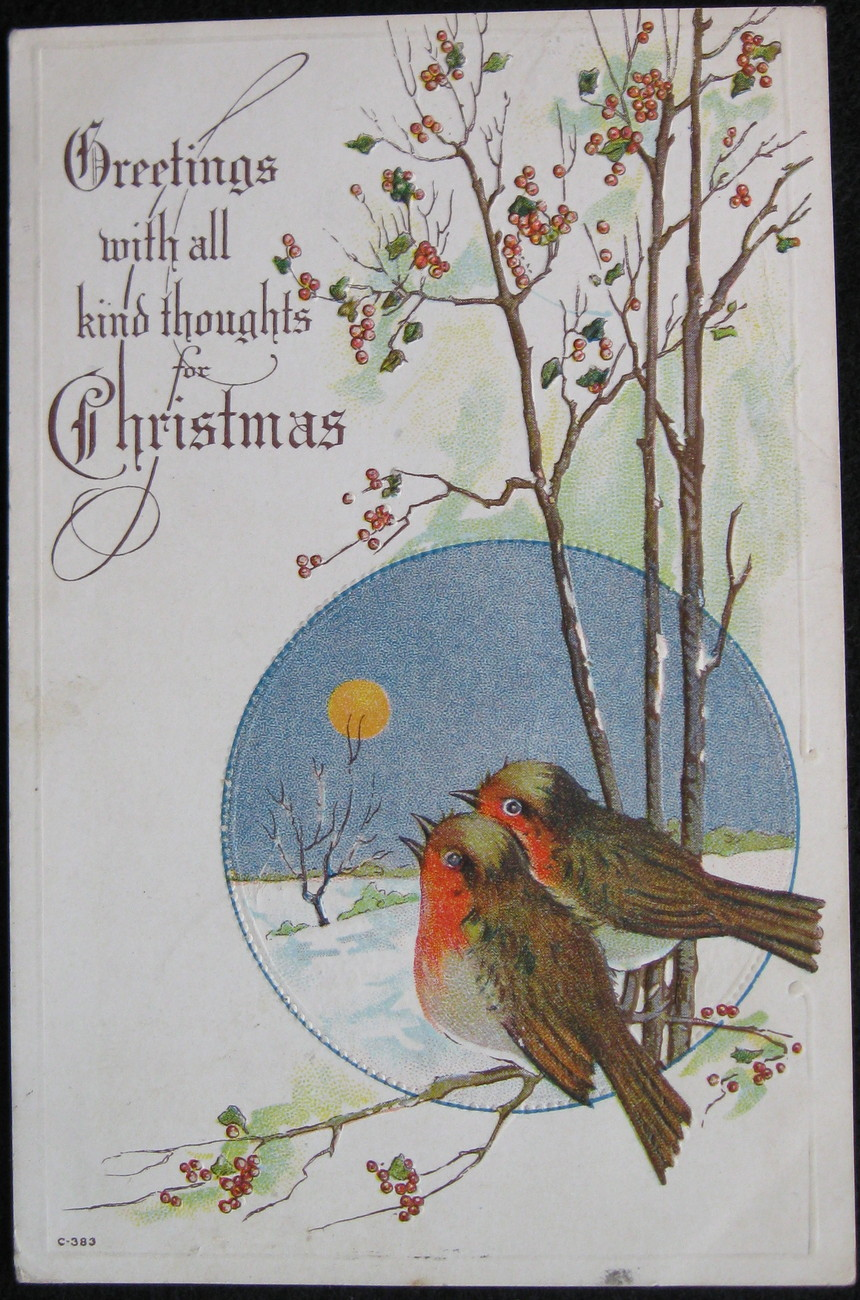 Primary image for Early Divided-back, Embossed Christmas Postcard,  Christmas Greetings, Bluebirds
