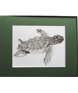 Sea Turtle, Pen and Ink, Framed Matted Sea Life Art Print Art Drawing - $39.00