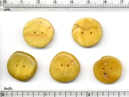 5 pcs Natural Baltic Milk and Honey Amber Buttons Shaped by Nature and Me. - $32.33