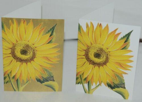 Caspari 7961446 Sunflower 8 Assorted Boxed Notes and Envelopes 2 Designs