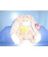 Harrison TY Beanie Baby MWMT 2004 - $6.99