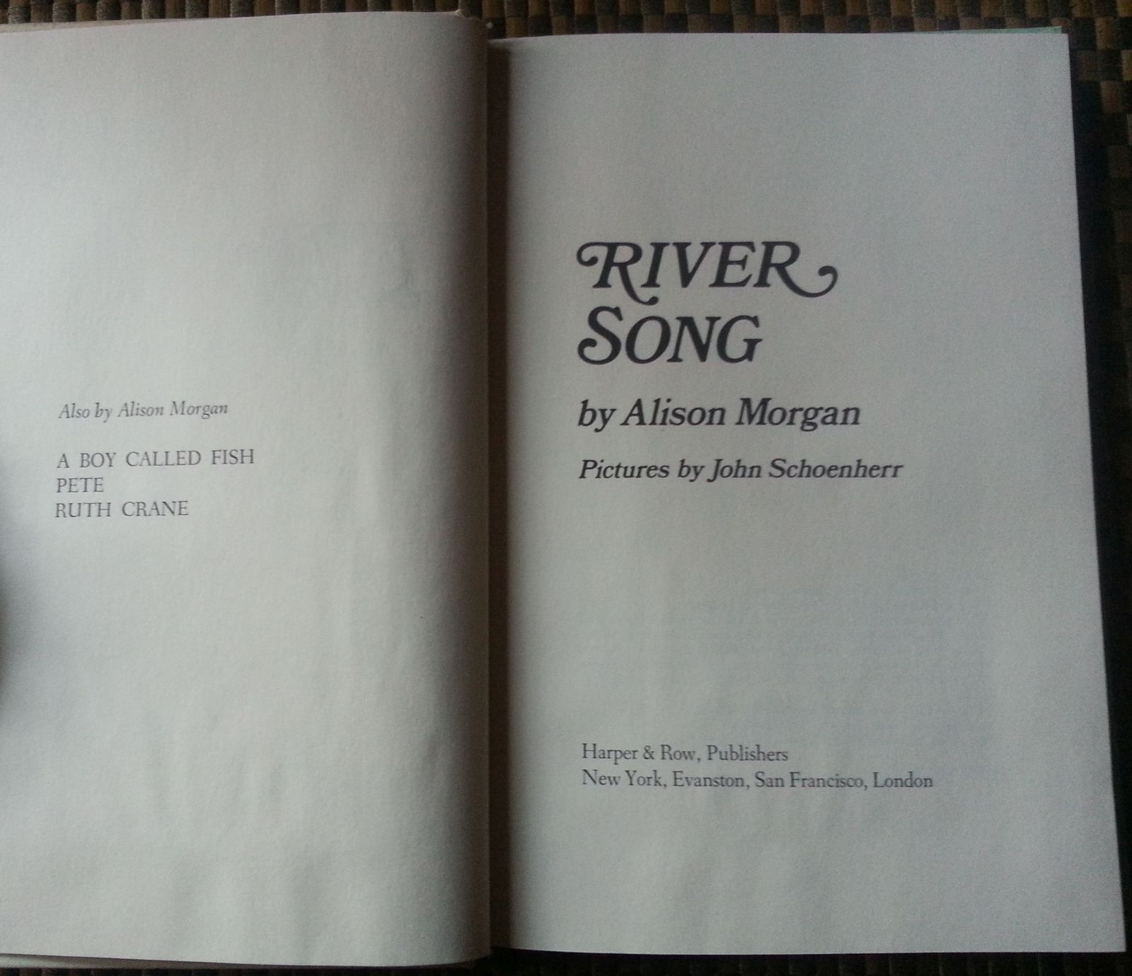River Song by Alison Morgan 1975 HBDJ Pied Wagtail Adventure