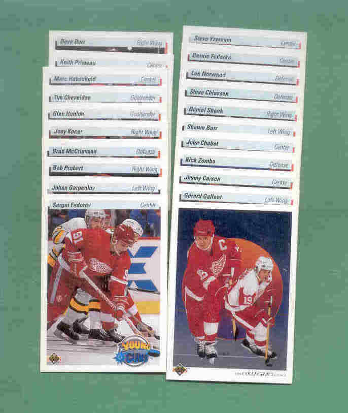 1990/91 Upper Deck Detroit Red Wngs Hockey Team Set