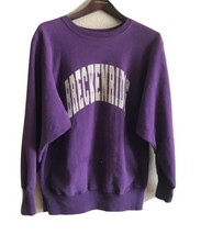 VTG Champion Reverse Weave Sweatshirt Breckenridge Colorado XL Large Purple - $33.62