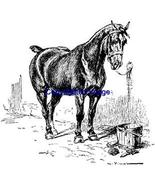 TIED HORSE-NEW RELEASE! mounted rubber stamp - $8.10