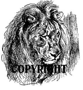 LION FACE new mounted rubber stamp NEW RELEASE!