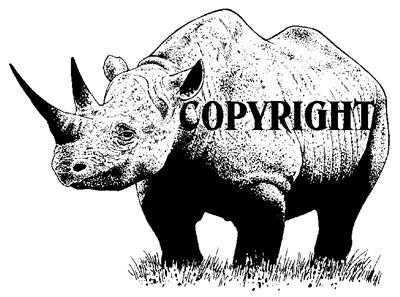 BABY RHINO new mounted rubber stamp NEW RELEASE!