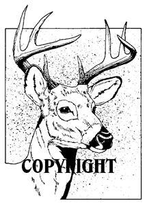 FRAMED DEER new mounted rubber stamp NEW RELEASE!
