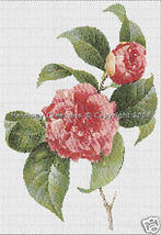 019 Bead Pattern Common Camellia Japonica Flowe... - $0.00