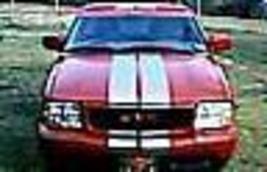 Dual 12in stripe thumb200