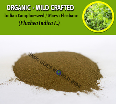 POWDER Indian Camphorweed Indian Fleabane Marsh Fleabane Indian Pluchea ... - $7.85+