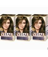 3xSchwarzkopf Vital Colors 6-0 LIGHT BROWN LongLasting Permanent Hair Co... - $29.81