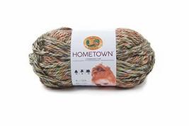 Lion Brand Yarn 135-229 Hometown Yarn, Durham Woods 1 Skein - $5.46