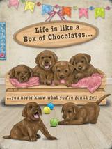 Life Is Like A Box Of Chocolates Labrador Puppies Medium Metal/Steel Wal... - $11.85