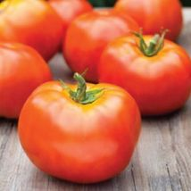 SHIP From US, 50 Seeds Marion Tomato Seeds, DIY Healthy Vegetable AM - $30.99