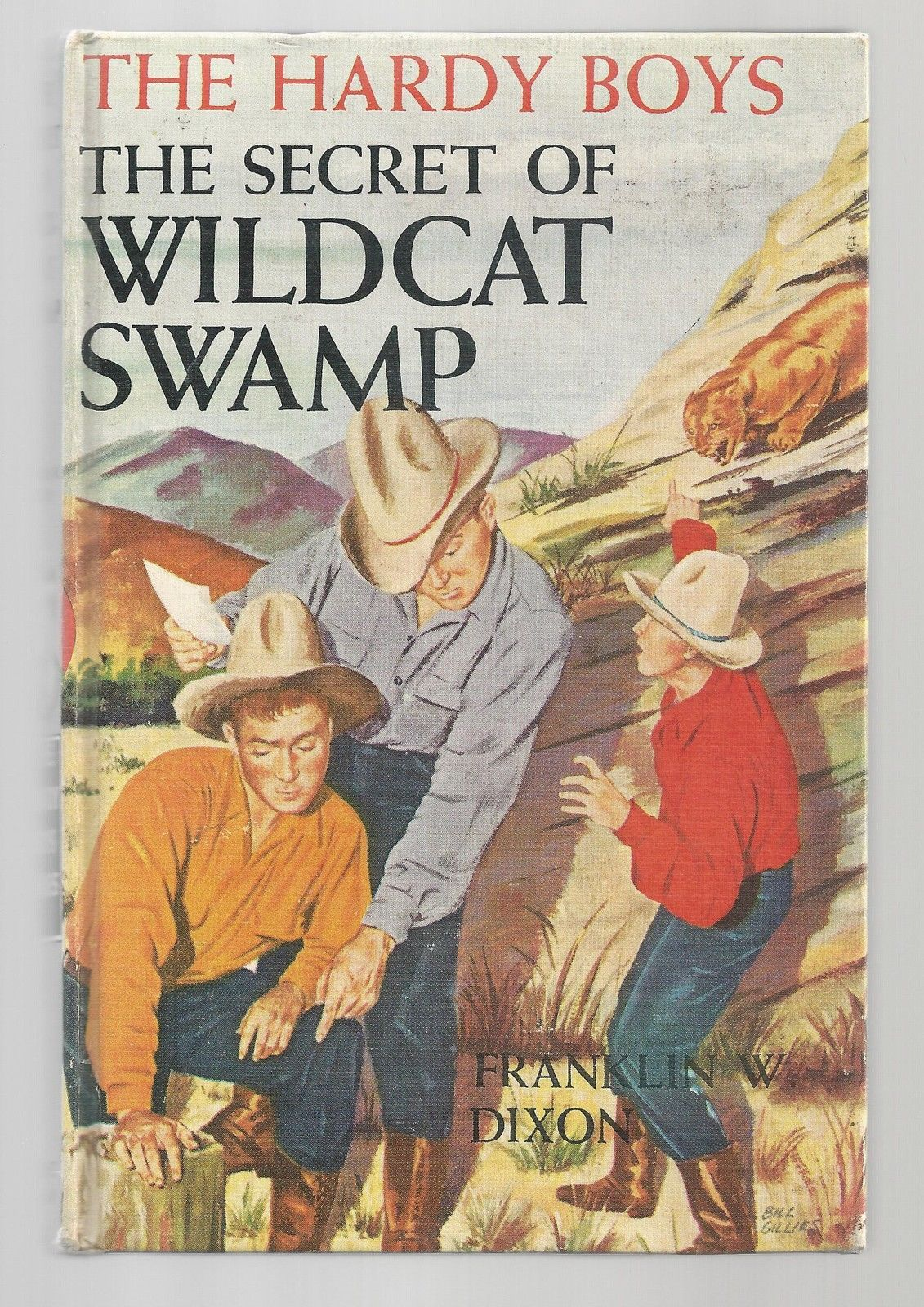 Primary image for Hardy Boys THE THE SECRET OF WILDCAT SWAMP   Early pic cov     1952   Ex++