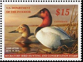 RW81, Mint VF NH 2015 $15 Canvasback Duck Stamp - Stuart Katz  - $34.95