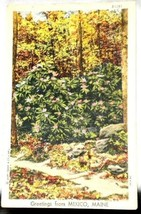 Curt Teich Linen Greetings Mexico Maine Postcard 1947 - $2.34