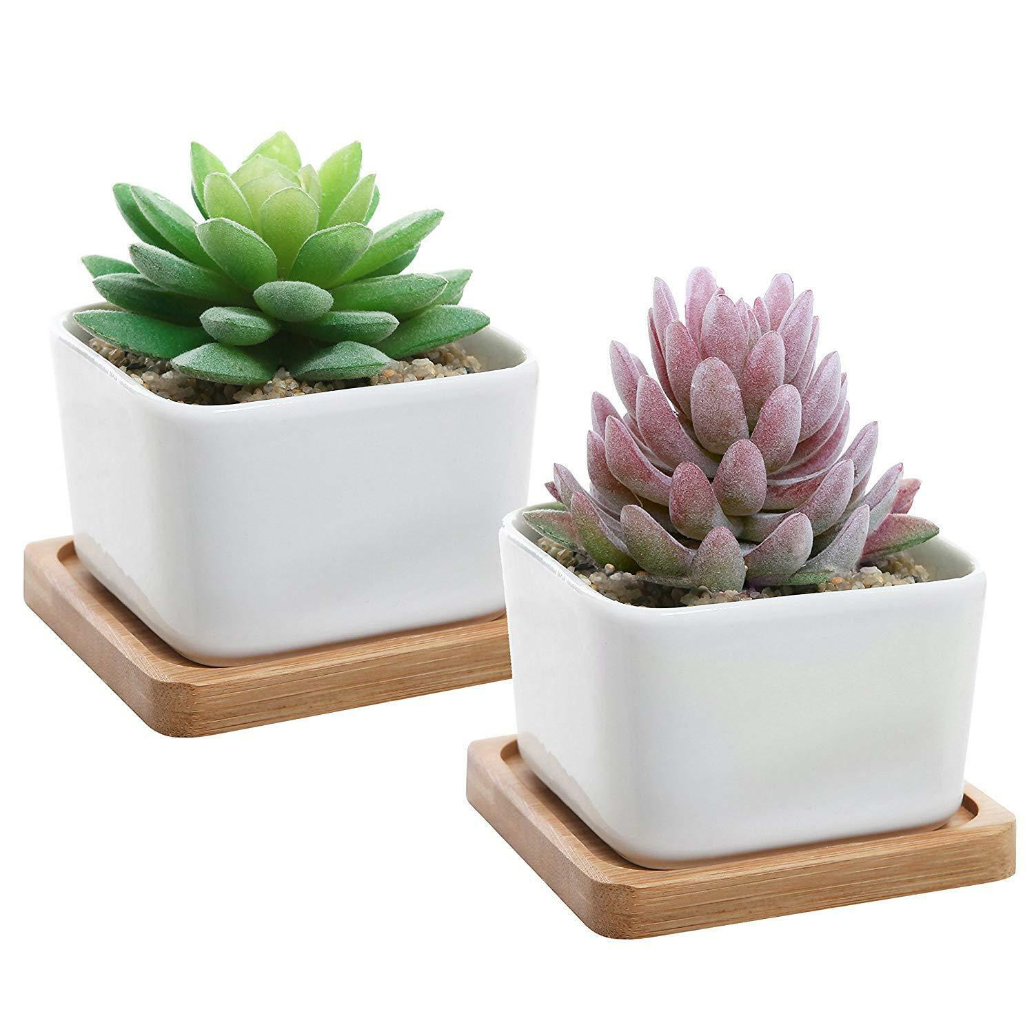 Primary image for Set of 2 Decorative Small White Square Ceramic Succulent Plant Pot w/Bamboo Tray