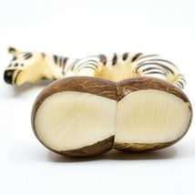 Hand Carved Tagua Nut Carving Zebra Figurine Made in Ecuador image 5