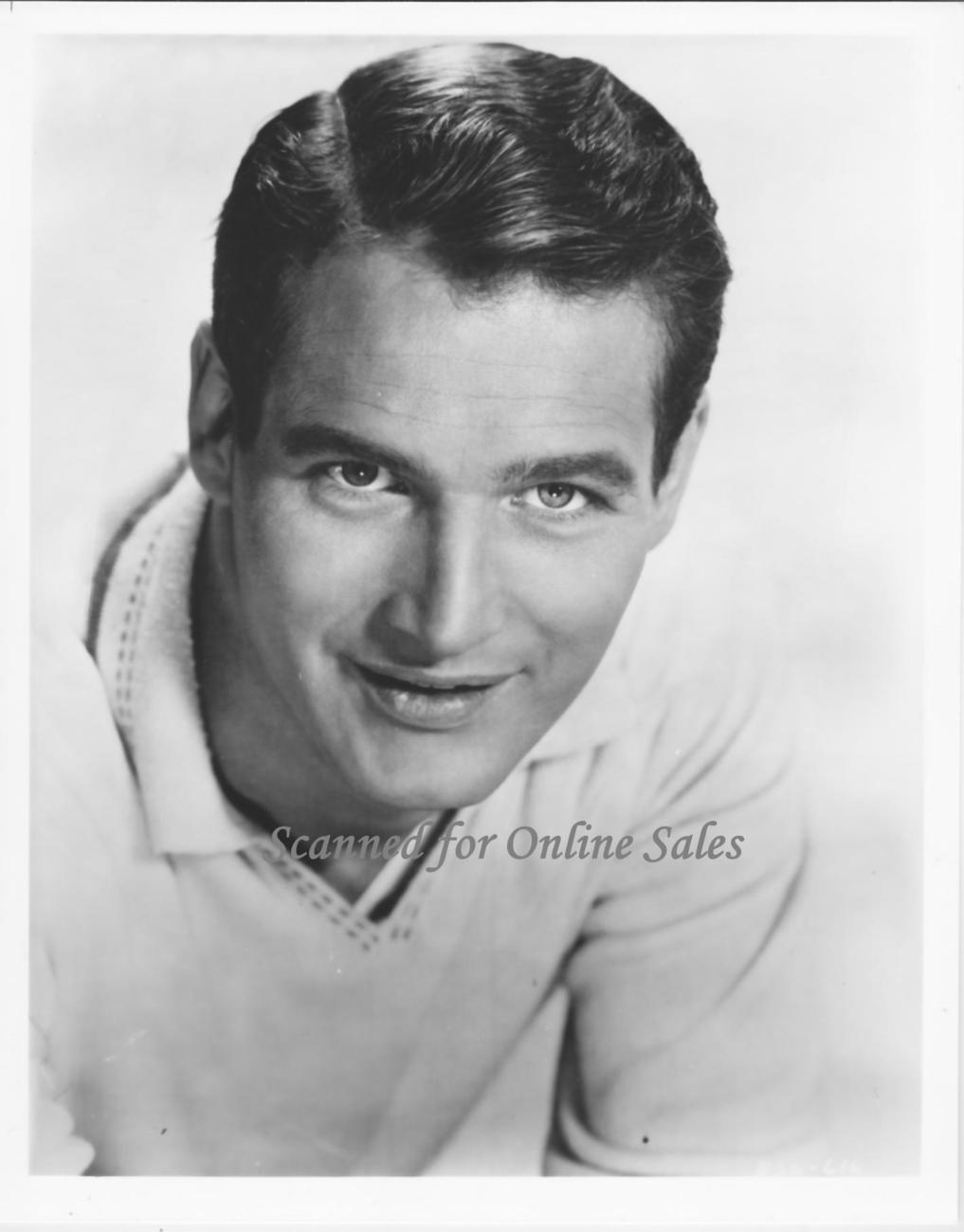 Handsome Hunk Paul Newman 8x10 Photo