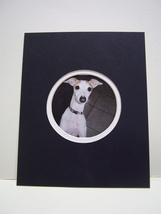 Italian Greyhound Puppy Photo Art Print Matted 8x10  Cute Dog Art Sighth... - $6.99