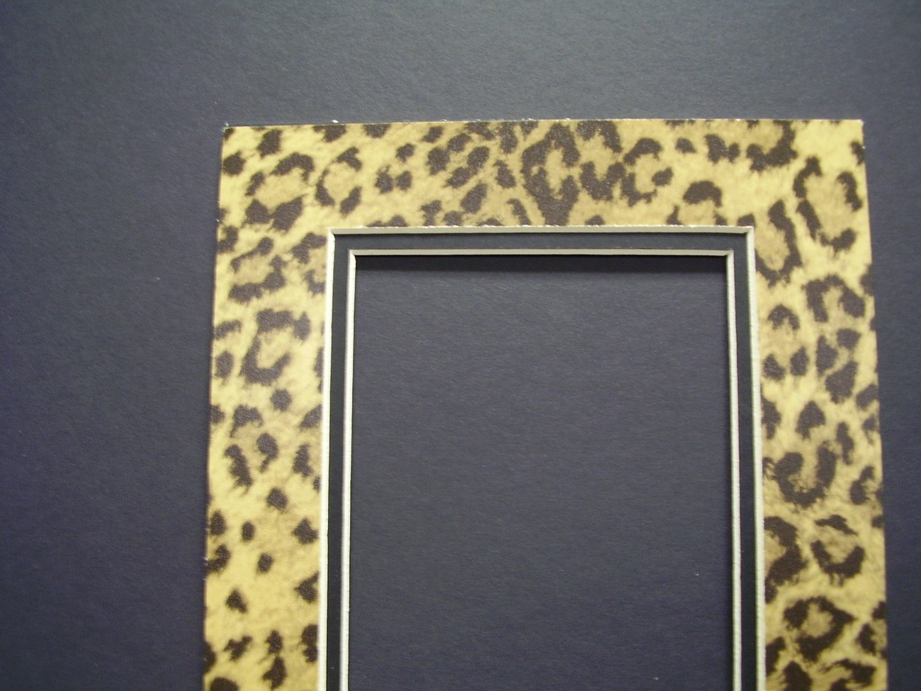Picture Frame Double Mat 8x10 For 5x7 Photo Leopard
