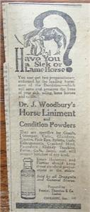 """1920 Dr. J. Woodbury's Horse Liniment """"Sick or Lame"""" Ad"""
