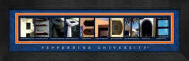 Pepperdine University Officially Licensed Framed Campus Letter Art - $39.95