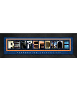 Pepperdine University Officially Licensed Framed Campus Letter Art - $39.95