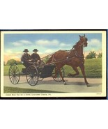 Amish boys out for a ride Lancaster County PA  ... - $6.00