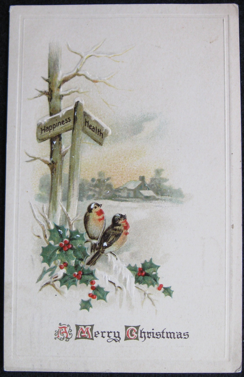 Primary image for Divided-back, Embossed, Christmas Postcard, A Merry Christmas, Holly, Bluebirds,