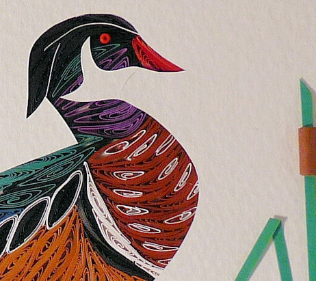 Quilled Wood Duck Standing