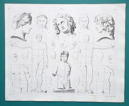 ANATOMY for Artists Body Proportions Head Torso - 1844 Superb Print - $30.60