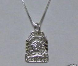 Sterling Silver Zodiac Necklace - CANCER - $35.00