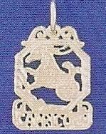 Sterling Silver Zodiac Necklace - CAPRICORN