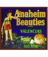 Anaheim Beauties Fruit Crate Label Art Print Vintage Scott Borden Califo... - $8.29