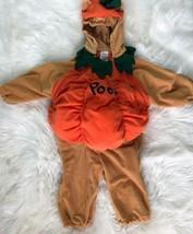 Disney Store Winnie the Pooh Pumpkin Baby Toddler Costume Size 18-24 Mon... - $14.85