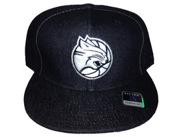 Charlotte Bobcats Reebok Fitted Black/Silver 143 - $32.00