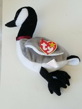 Ty Beanie Baby Loosy The Goose - $7.75